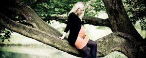 gravid-mavebilleder